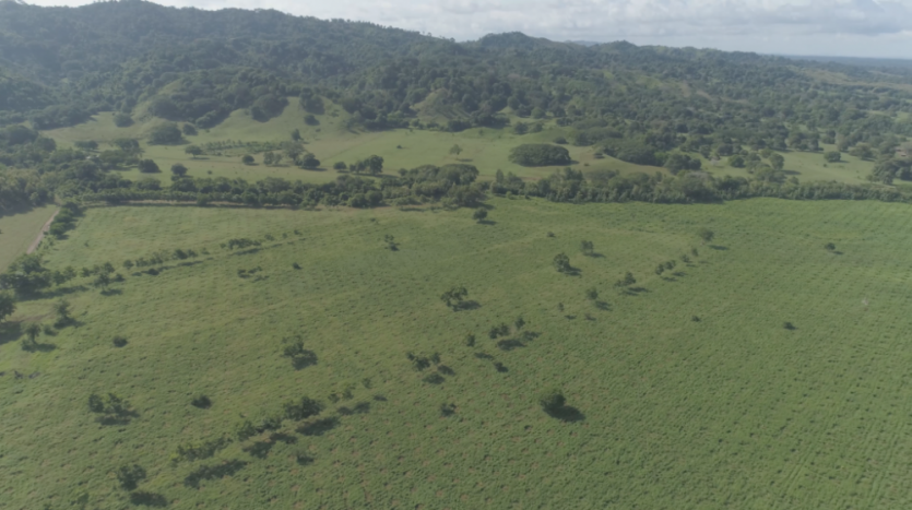 Colombia Farm Investment